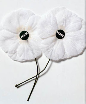 Two white poppies